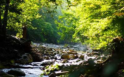 Шаманский кемп Фанагория река