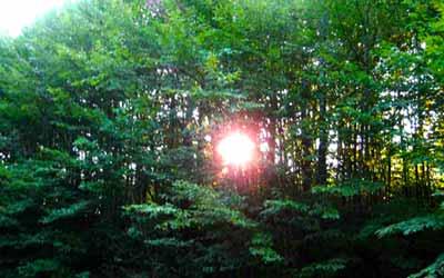 Шаманский кемп Фанагория рассвет