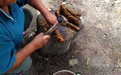Подготовка Аяхуаски