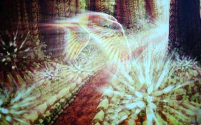 Фестиваль свет