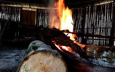 Огонь Аяхуаски