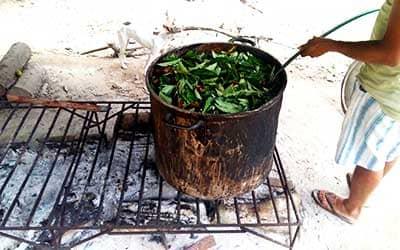 Приготовление Аяхуаски в Пукальпе